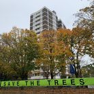 Campaign group Save The Trees, whose members have fought against felling the trees at Dixon Clark Co