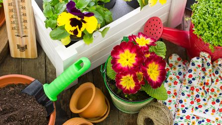 Undated Handout Photo of Gardening tools and flowers. See PA Feature TOPICAL Growing Plants. Picture