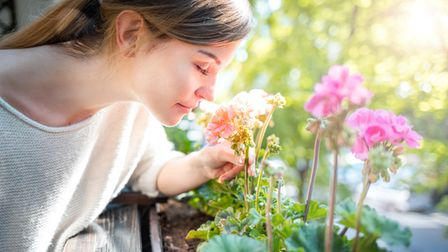 Gazing at plants can have a calming effect.