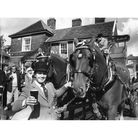 A dray, pulled by Suffolk Punch horses, visiting the Woolpack pub in Ipswich September 1990