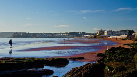 A man walking on the edge of the sea on a calm day at Preston beach in Paignton