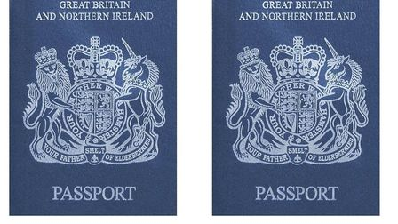Andrew Adonis says the new blue passports will take Britain back to the past. Picture: Flickr