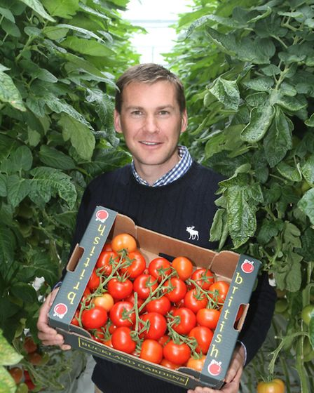 Guy Warner, owner of Warner's Budgens, with the British tomato crop
