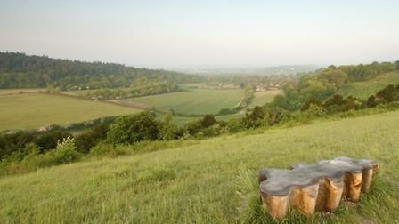 Wooden Bench in the North Downs