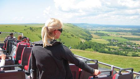 Breeze up to the Downs
