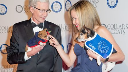Celebrities to attend Battersea ball in aid of abandoned dogs and cats