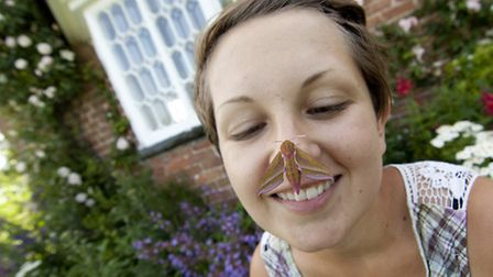 Bringing people closer to nature like these moths helps bring the environment to life