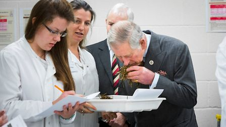HRH Prince of Wales visited the RAU