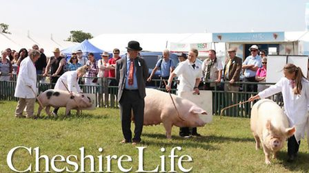 FREE Cheshire Life 2014 Calendar with the December issue