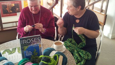 Jack's beanstalk receives a 'nurturing hand' from enthusiastic local knitters