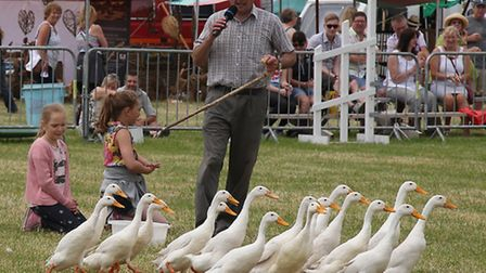 Cheshire County Show 2014 preview