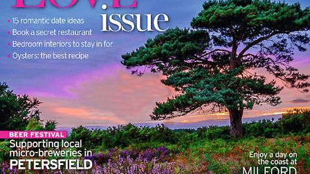 Hampshire Life February 2014 cover