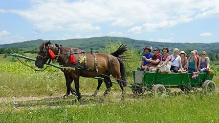 Local transport is often by horse and cart. Photo by William Watson