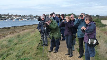 Come along to a Wildlife Trust guided walk