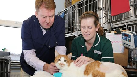 Prof. John Innes with Nurse Team Leader, Samantha Frogley and 'Beansie' the cat
