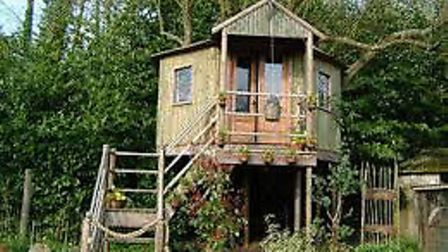 The treehouse...