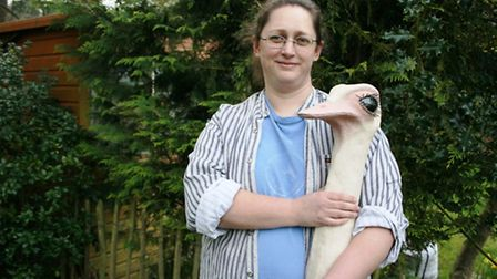 Alison Catchlove with ostrich in the making