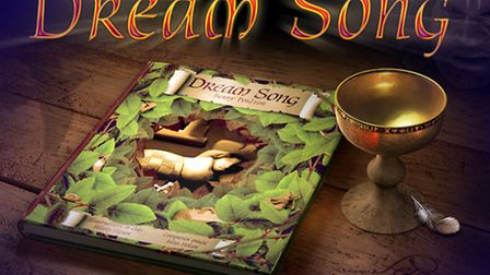 Dream Song Book Cover