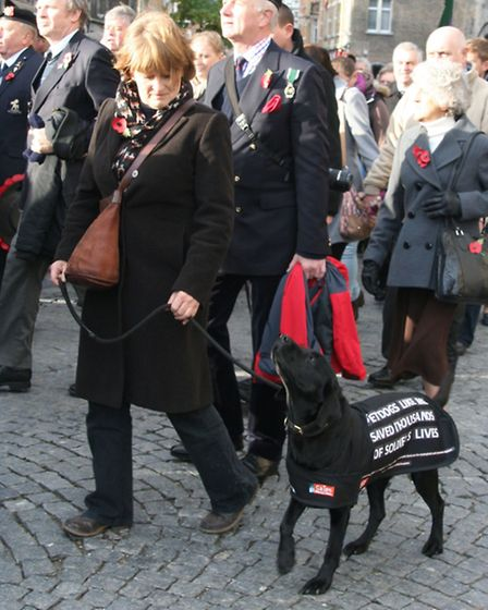 Molly in parade Ypres 13 © Southern News & Pictures Ltd.
