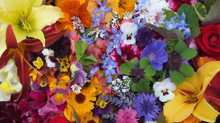 A vibrant mix of blooms including daylilies, oxalis and pansies