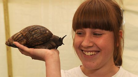Danielle Jackson with a Giant African Land Snail in the Merrist Wood tent
