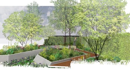 An artist's impression of Hugo Bugg's RBC Waterscape Garden