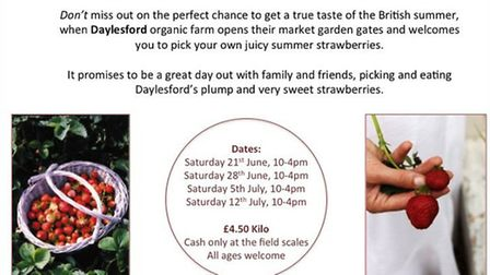 Daylesford Pick Your Own