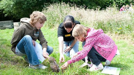 Children looking for insects under log pile with RSPB staff member. Visitors to Rye Meads RSPB reser