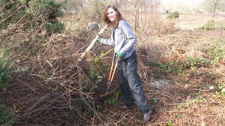 Surrey Hills Society chairman Christine Howard helps out with some practical volunteering on Headley