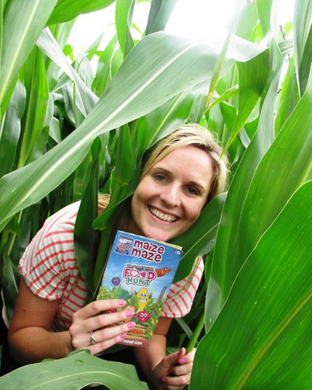In the Maize Maze
