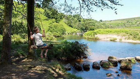 Tom enjoys the swing by the stepping stones