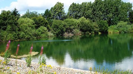Blashford Lakes is a bustling centre for wildlife. Image: Peter Hutchings