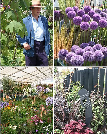 The BBC's Monty Don, Allium, The Floral Marquee, NSPCC Garden