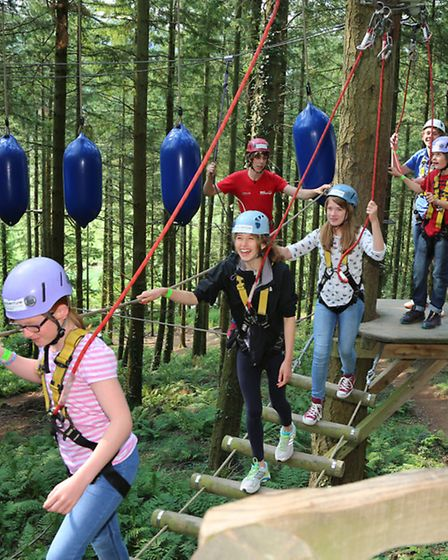 Instructor, Bradley White (at the rear), with some young thrill seekers at Betws-Y-Coed Tree Top Adv