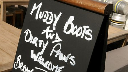 These are the hotels that say Muddy Paws Welcome and mean it!