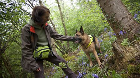 Emma rewards German shepherd Kim after her first training session hoping to seek out signs of rare d