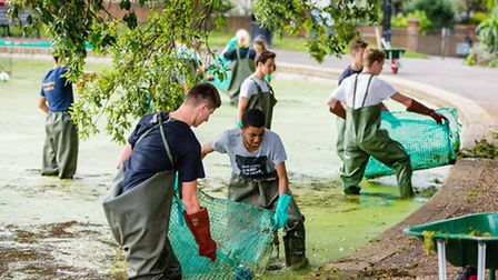 Year 12 children tackling the pond weed at Queens Park - Picture by Brighton Togs/Skye Brackpoo