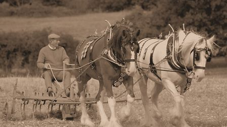A hundred years ago, as our forefathers were themselves harvesting on these famous hills, Britain wa
