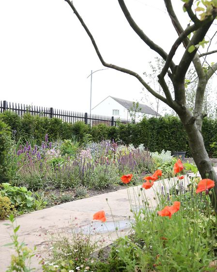 The Kirkdale Country Garden, Liverpool