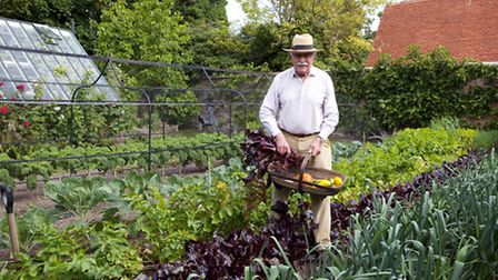 Mr Sellick collects some of the summer's harvest in a traditional Sussex trug