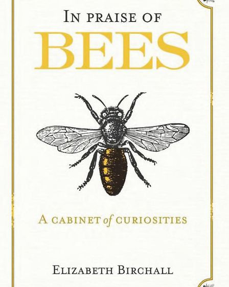 In Praise of Bees, by Elizabeth Birchall