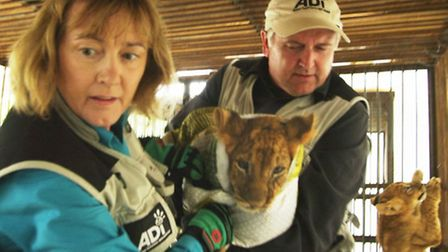 Jan Creamer and Tim Phillips carry cub