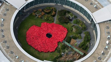 The enormous poppy created by GCHQ staff in October to raise funds for the Poppy Appeal