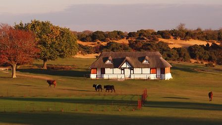 The thatch-roofed cricket clubhouse viewed from Bolton's Bench, Lyndhurst © Steve Davison