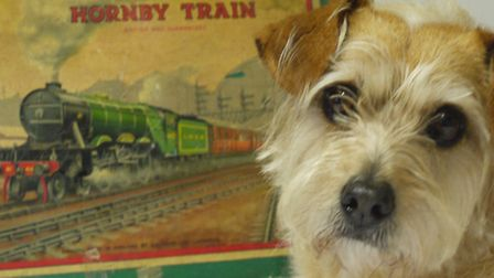 Reggie 'inspecting' an antique Hornby Railway Set which has been donated and is expected to raise be