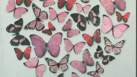 Pretty in pink What girl doesnt love a butterfly, and a whole heart-full of them really cant be bea