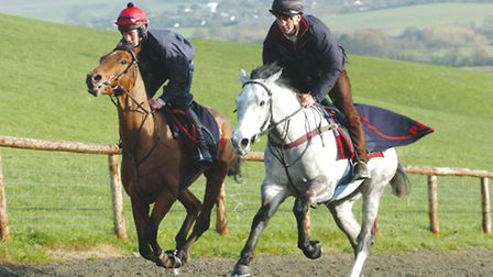 Andrew going up the gallops on Detroit City