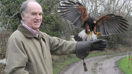 Ian Finlayson on his first experience, with Sid the Harris Hawk