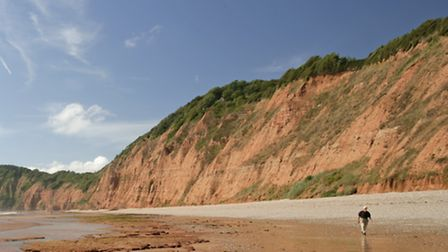 The Jurassic Coast - just one of the many attractions which have visitors flocking to Devon