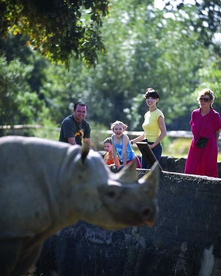 Go really wild at Chester Zoo
